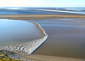 Tidal_Bore_-_geograph.org.uk_-_324581